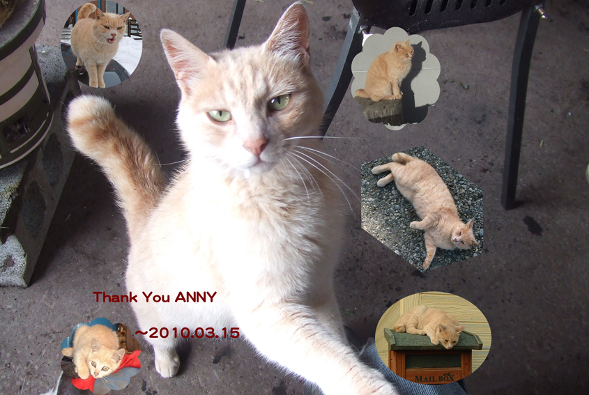 Anny1_2